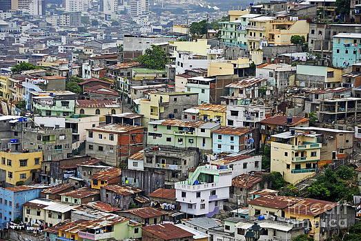 Guayaquil by Sami Sarkis