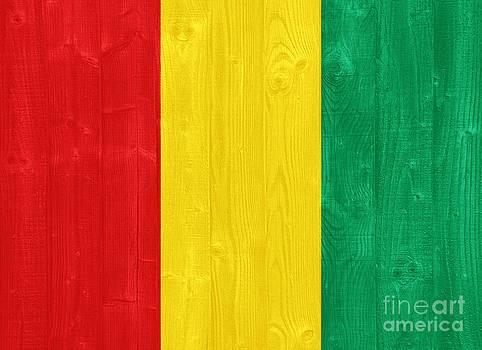 Guinea flag by Luis Alvarenga