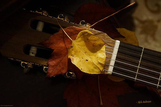 Mick Anderson - Guitar Autumn 4