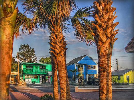 Gulf Boulevard by Hanny Heim