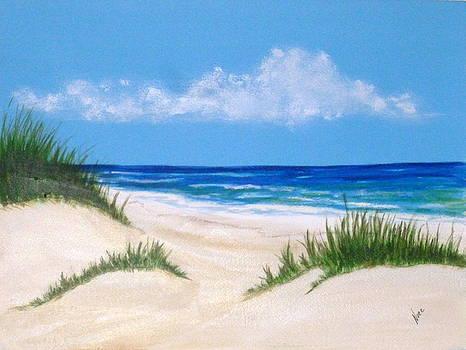Gulf Coast 6 by Nancy Nuce