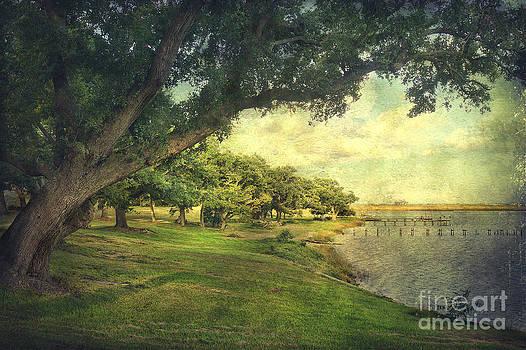 Gulf Coast Shoreline by Joan McCool