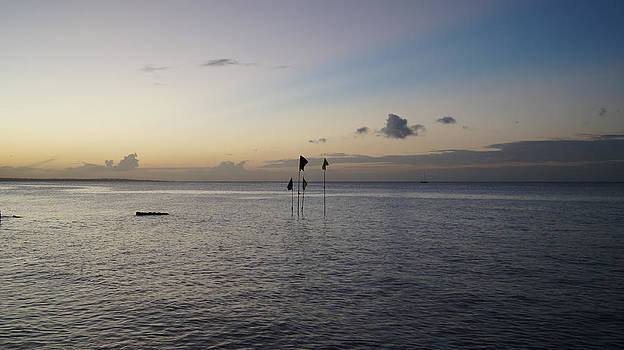 Gulf of Paria from Mosquito Creek at Dusk by Christian Hume