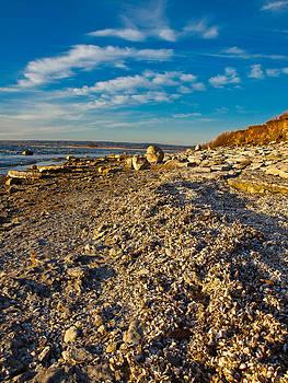 Gull Island 3 by Bernd Buessecker