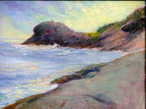 gull Rock- Monhegan by Mark Hayden
