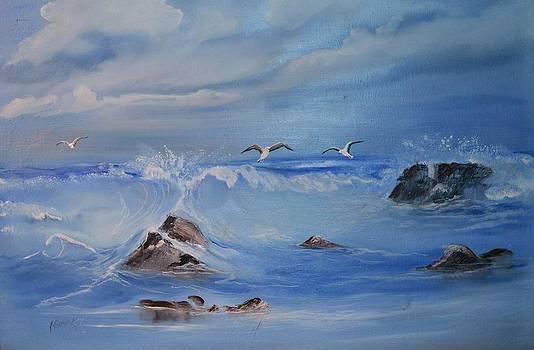 Gulls by Barney Hedrick
