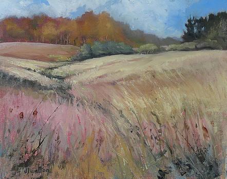 Guy Dennis's Prairie by Judy Fischer Walton