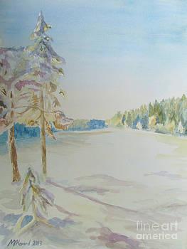 Martin Howard - Gyllbergen Winter