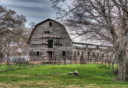 Lisa Moore - Gypsy Queen Farms Barn III