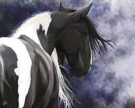 Gypsy Vanner by Kate Black