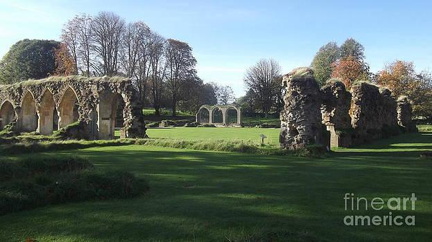 Hales Abbey 2 by John Williams