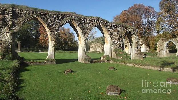 Hales Abbey 6 by John Williams