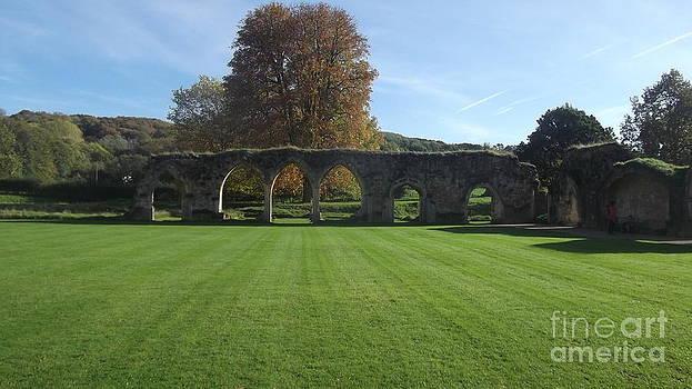 Hales Abbey 8 by John Williams