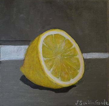 Half a lemon by Juan Sandin