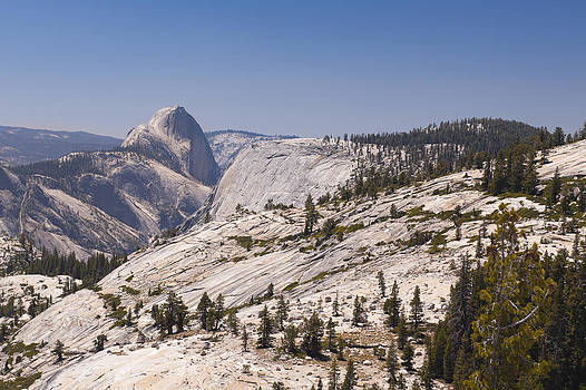 Half Dome and the High Sierra by Richard Berry