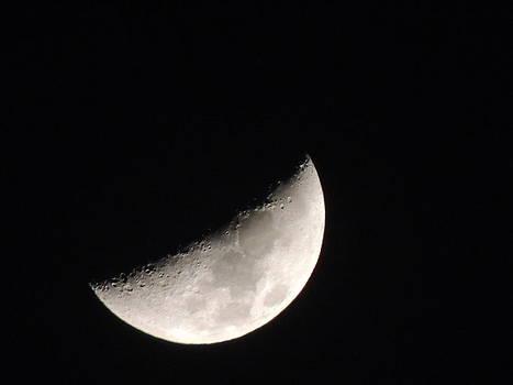 Half moon - April by Ramesh Chand