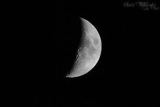 Half Moon by Alivia Houdek