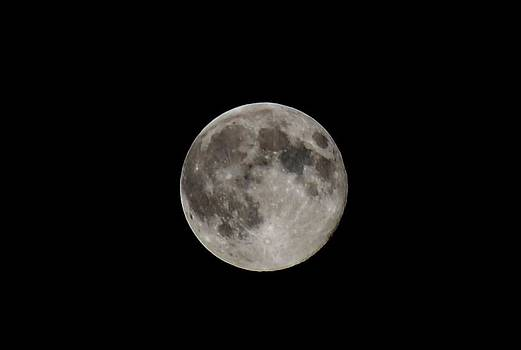 Full Moon by Jennifer Wartsky