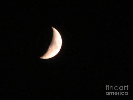 Half Moon by Surabhi Jain