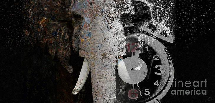 Half Past Extinction by Nola Lee Kelsey