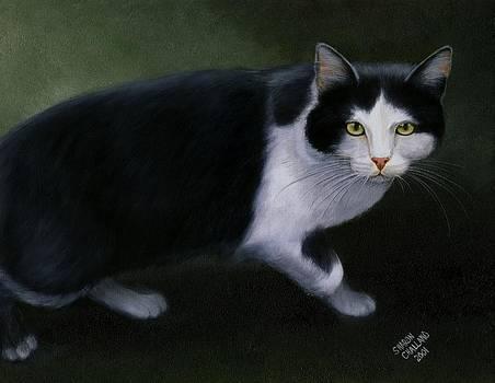 Half Wild Tom Cat  by Sharon Challand