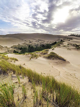 Hall Lake Sand Dunes  by Kristal Talbot