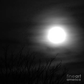 Tim Richards - Halloween Moon BW