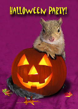 Jeanette K - Halloween Party Squirrel