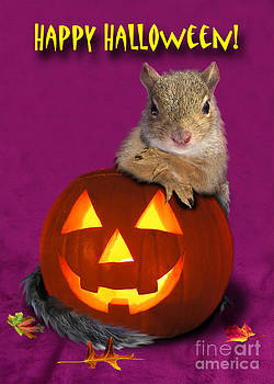 Jeanette K - Halloween Squirrel