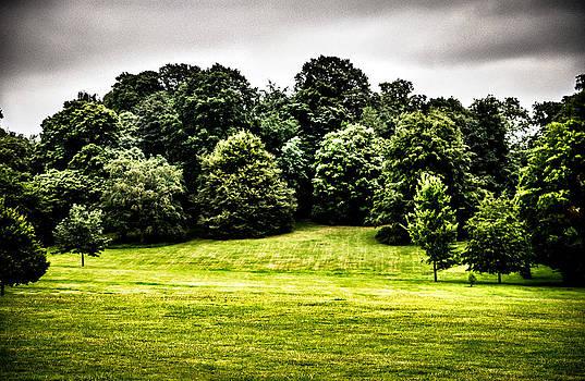 Lenny Carter - Hampstead Heath Greens