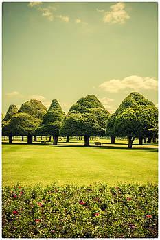 Lenny Carter - Hampton Court Palace Gardens Summer Colours
