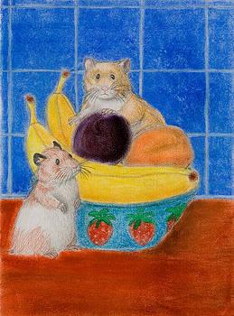 Jeanette K - Hamsters in Fruit Bowl