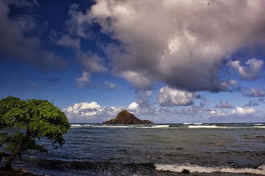 Hana Maui Hawaii by Bailey and Huddleston