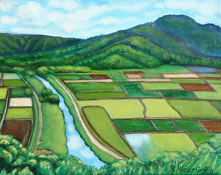 Hanalei Taro Fields by Kristine Mueller Griffith