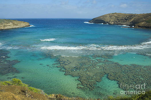 Charmian Vistaunet - Hanauma Bay View