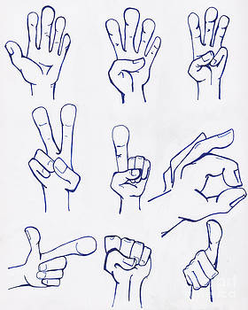 Tim Hester - Hands Drawn in Ink