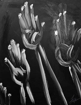 Hands Up  by Faytene Grasseschi