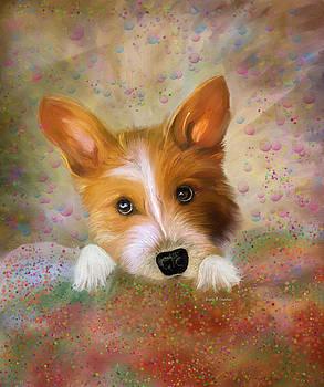 Angela A Stanton - Hankie a Corgi and Westi Mix Cute Dog