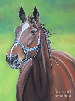 Hanover Shoe Farm Horse by Charlotte Yealey
