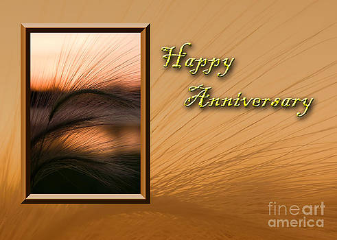 Jeanette K - Happy Anniversary Grass Sunset