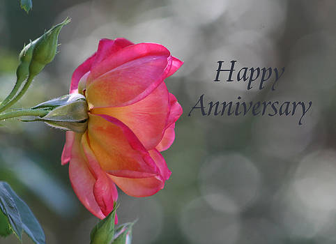 Happy Anniversary by Marna Edwards Flavell