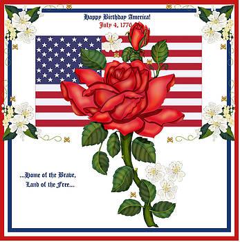 Happy Birthday America by Anne Norskog