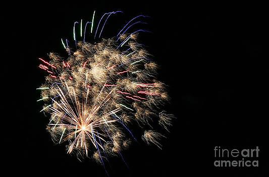 Happy Birthday America by Casey Hanson