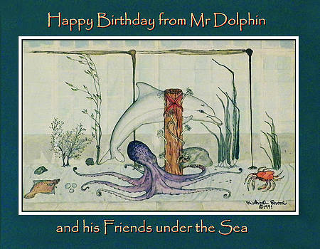 Happy Birthday from Mr Dolphin by Michael Shone SR