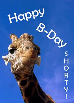 Happy Birthday Shorty by Amber Joy Eifler