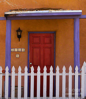 Red Door by Nancy Yuskaitis