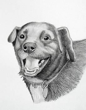 Happy Dawg by Lorraine Foster