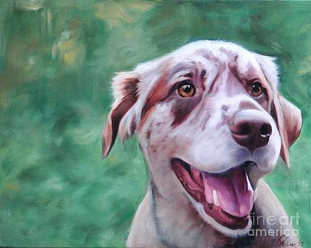 Happy Dog by Pet Whimsy  Portraits