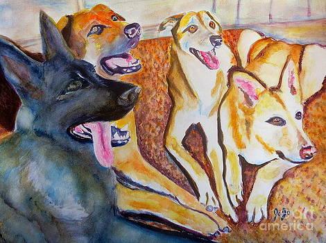 Happy Dogs by Jodie  Scheller