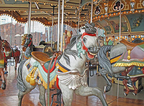 Barbara McDevitt - Happy Grey Pony